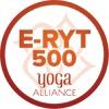 e-ryt500-1