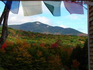 whiteface-himalayas-2-fall-09